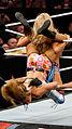 WWE 2014-04-07 19-52-25 NEX-6 1084 DxO (13929438351).jpg