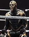WWE Live 2015-04-17 20-47-36 ILCE-6000 9640 DxO (19688885721).jpg
