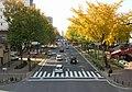 Wakamiya -Odori 20151213A.JPG