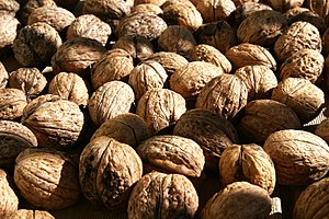 Paleolithic diet - Seeds such as walnuts are rich sources of protein and micronutrients.