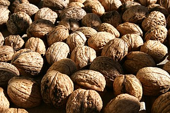 Nuts such as walnuts (pictured above) are rich...