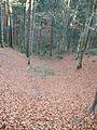 Wandern im November in Todtmoos - panoramio (17).jpg