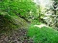 Wanderweg zwischen Altburg und Hirsau - panoramio.jpg
