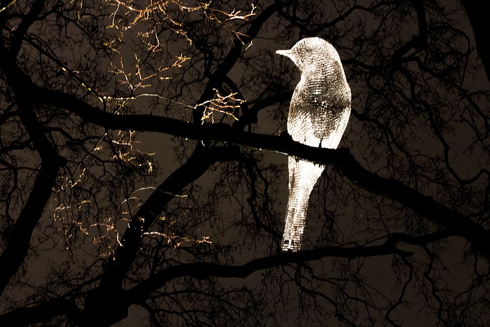 Was that a dream by Cedric Le Borgne