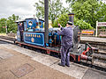 "Watering ""Bluebell"" at Sheffield Park (9131218556).jpg"
