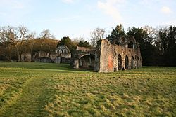 Waverley Abbey 03.jpg