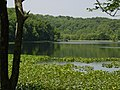 Wellston, Ohio 2002 DSC02086 (25401267153).jpg