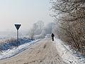 Winter biker (2152064929).jpg