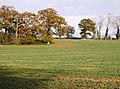 Winter crops - geograph.org.uk - 630306.jpg