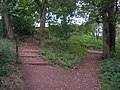 Woodland Path - geograph.org.uk - 574559.jpg