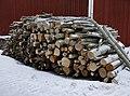Woodpile winter 20190228.jpg