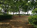 Yokogumayama Site Park 20160515-2.JPG