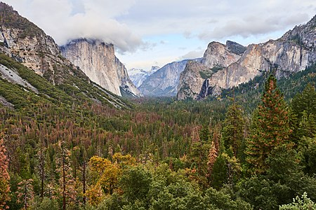 Yosemite Tunnel View Fall Wide.jpg
