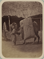 Zeravshan District. City of Samarkand. A Man Leading a Camel WDL11136.png