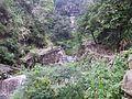 Zhangping Creek 樟平溪 - panoramio.jpg