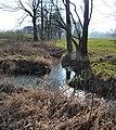 Zusammenfluss Cunnersdorfer Wasser Krummbach.jpg