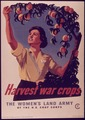 """Harvest War Crops, The Women's Land Army"" - NARA - 514440.tif"