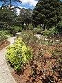 (Jardín Botánico de Quito). pic a2.JPG
