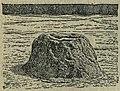 БСЭ1. Гейзеры 1.jpg