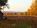 Березовка. Осенний рассвет. - panoramio.jpg