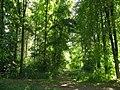 Дальний угол парка - panoramio.jpg