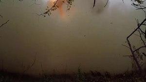 Файл:Испытательный пуск ракеты «Тополь-М» на космодроме Плесецк.webm