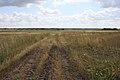 Исчезающая дорога - panoramio.jpg