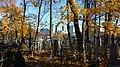 Минск, Кальварийское кладбище, осень.jpg