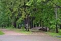 Парк. Воронино, Ростовский район, Ярославская область.jpg