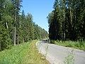 По дороге - panoramio (2).jpg