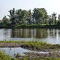 Река Ай. Большеустьикинское, Башкортостан - panoramio.jpg