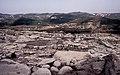 Родопи – Източни - ЗЗ по директивата за местообитанията – ZZ1032 – Източни Родопи от Перперикон, с. Горна крепост - No8.jpg