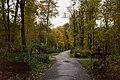 Смоленское православное кладбище, дорожки.jpg
