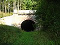 Стары чыгуначны тунэль у Панарах. Old railroad tunnel in Paneriai - panoramio.jpg