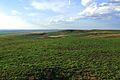 Урочище Утиная гора 12 - panoramio.jpg