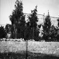 בית משפחת רופין רמבן 30 רחביה ירושלים-GNAR-330978.png