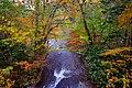 ラルマナイの滝 (Falls Rarumanai) - panoramio.jpg