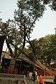 中國山西太原古蹟B370.jpg