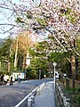 南禪寺前 The Road Leading to Nanzen-ji - panoramio.jpg