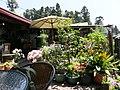 懷舊餐廳 Nostalgia Restaurant - panoramio.jpg