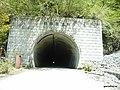 犬越路隧道 - panoramio.jpg