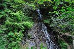 白岩の滝 - panoramio (24).jpg
