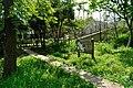 矢川緑地 - panoramio (1).jpg