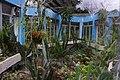 臺北植物園 Taipei Botanical Garden - panoramio.jpg