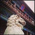 这里就是《水浒传》中武松痛打西门庆的狮子楼,门口的狮子非常威武。-水浒传 -狮子楼 -阳谷县 (16433708879).jpg
