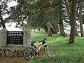 高島市 湖西の松林 「日本の白砂青松百選」 - panoramio.jpg