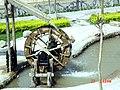 黄河水车,甘肃兰州,中国 - panoramio.jpg