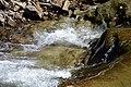 02017 0239 Ufer der Wislok in Rudawka.jpg