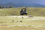 125th STS and Army SF fast rope training with 160th SOAR2.jpg
