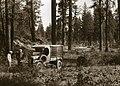 1926. Walter J. Buckhorn (left) and F. Paul Keen. Modoc National Forest, California. (36471929284).jpg